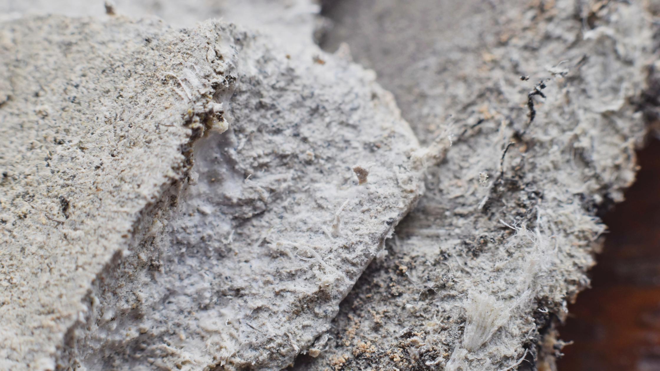 asbestos workplace safety