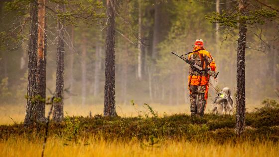 hunting season safety tips